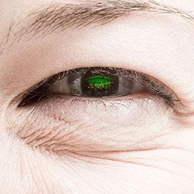 Auge © Maximilian Rosenberger 2013